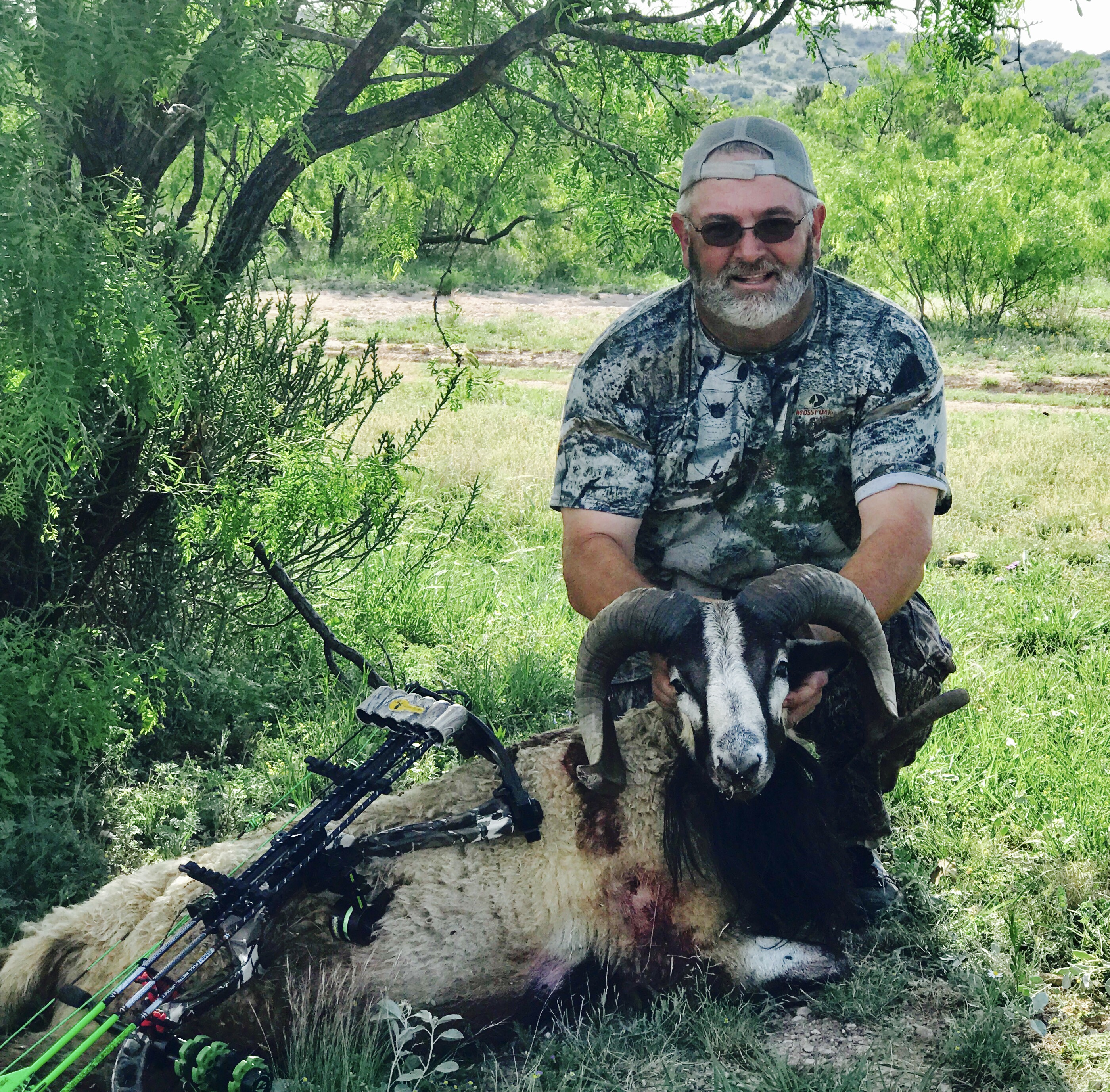 home lone star bowhunters associationthe lone star bowhunters association (lsba) is a 501(c)(3) non profit organization established in 1974 it is the only state organization representing your